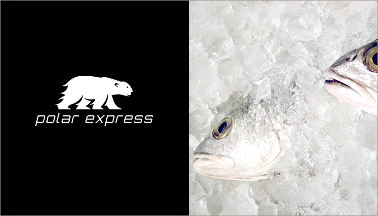 Polar_Express_Couriers1_Alchemist_Logo_Design